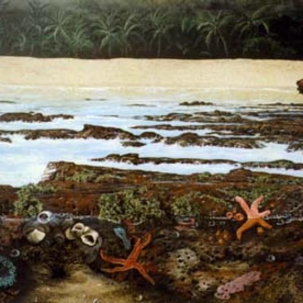 HULOPOE BEACH 24″X36″