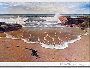 sand-surf