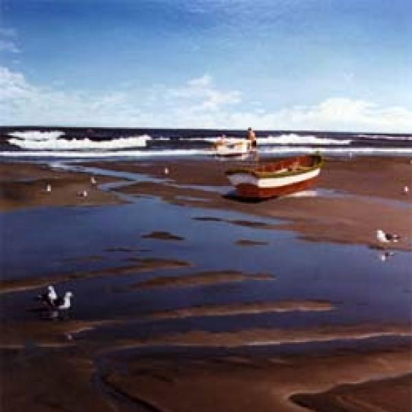 SEA HARVEST 30″X24″