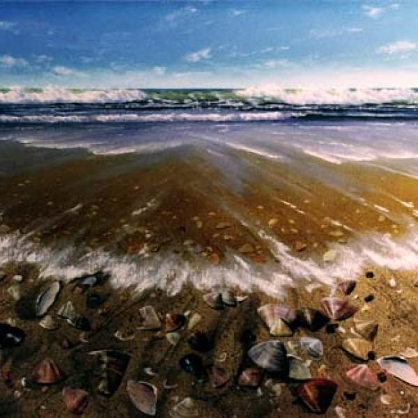 SHELL BEACH 36″X36″
