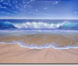 shoreline-splendor